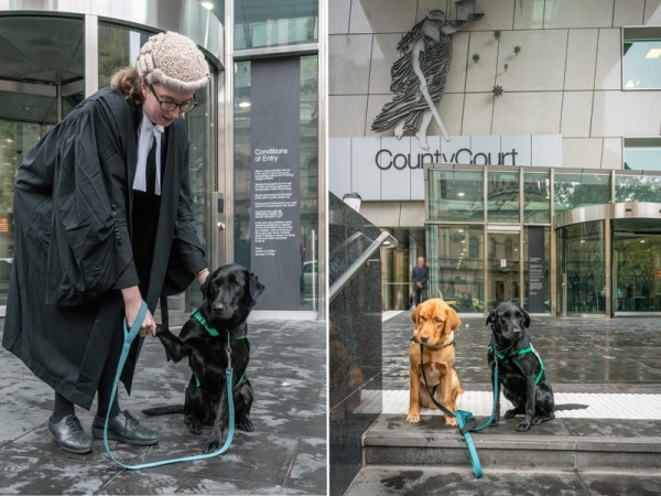 Coop & Champ Outside Melbourne County Court